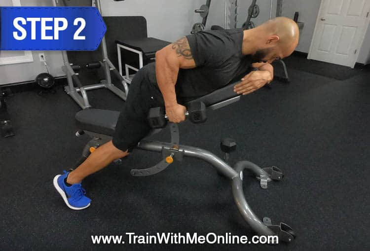rows for back muscles